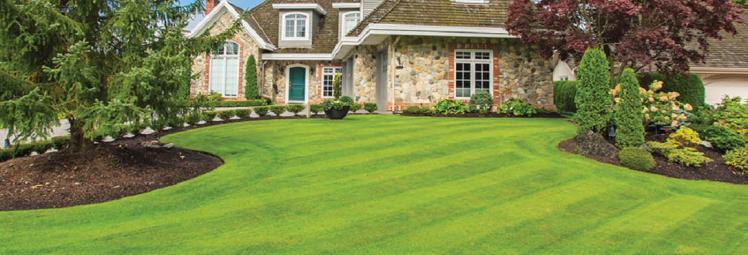 True-Design-Lawn-Landscape-Banner-Image